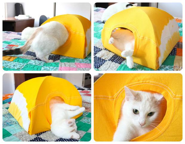 Aproveitando a tenda.