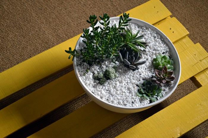 Decore sua mesa de centro com uma plantinha.