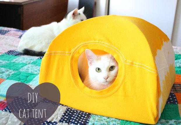 Tenda para gatos
