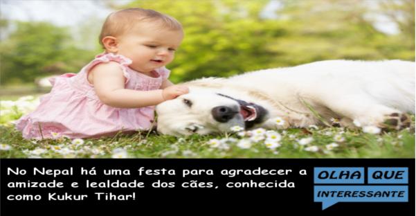 Amizade dos Cães - Kukur Tihar
