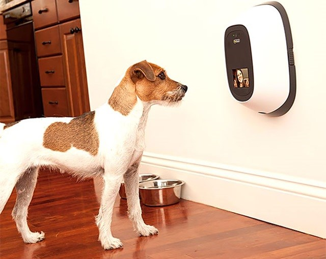 Baba eletrônica para animais de estimação.
