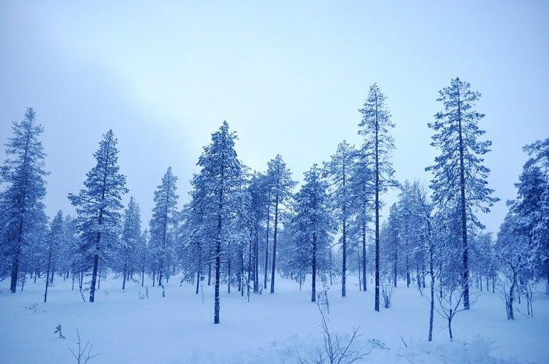 O frio... Brrr
