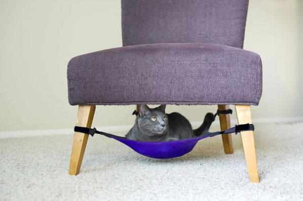 Rede para gatos.