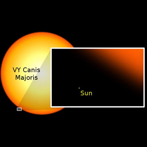O Sol comparado a outra estrela