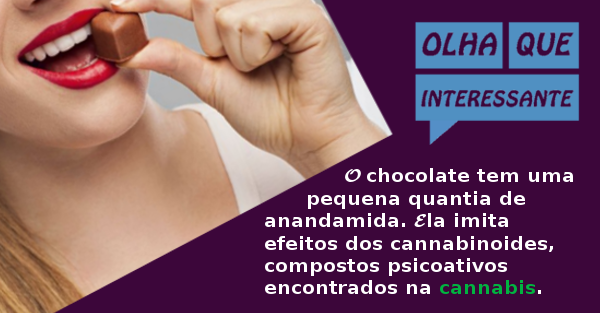 O Chocolate e a Anandamida
