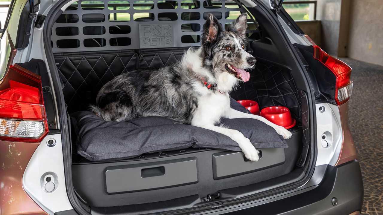 Cães e carros utilitários